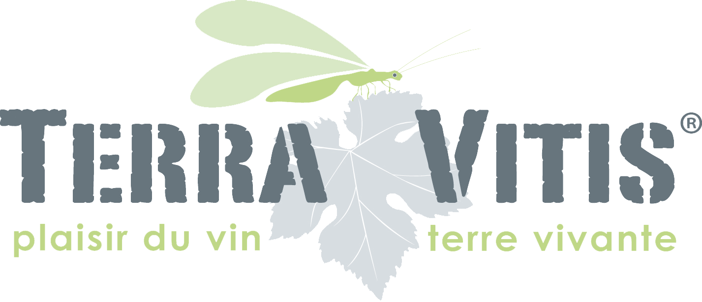 Famille Lieubeau - Terra Vitis